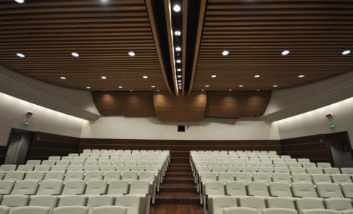contosoffitto e platea auditorium