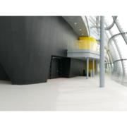 rivestimento esterno auditorium Nuvola