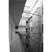 Courtyard Palazzo Rhinoceros black and white